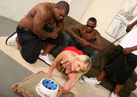 Casey Cumz having interracial fun with 3 hung blacks from Blacks on Blondes