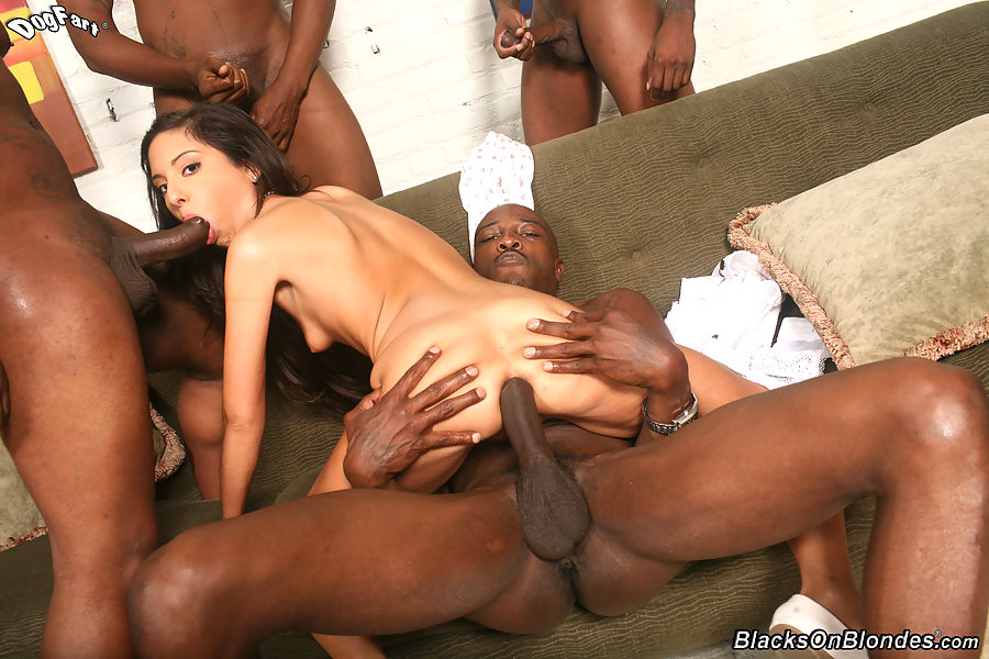 Blacks on blondes gangbang trinity